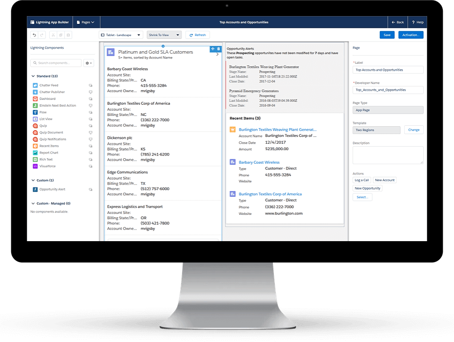 Reporting with salesforce customization